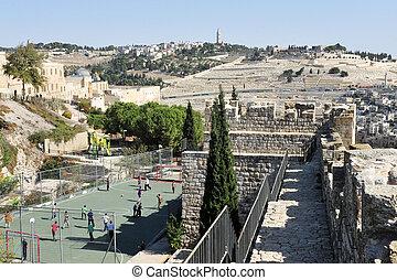 Monte de aceitunas en Jerusalén Israel