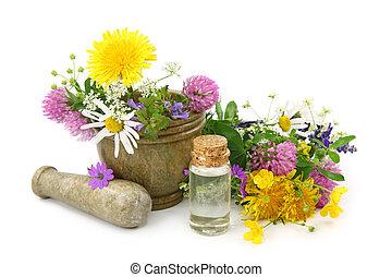 mortero, flores, fresco