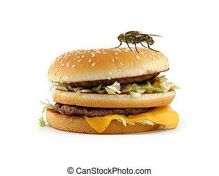 mosca, hogar, apetitoso, hamburguesa, sentado