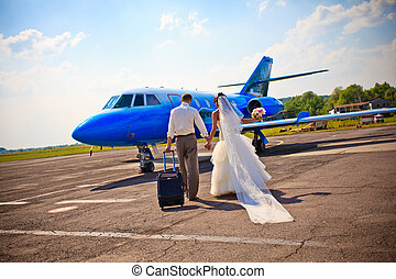 mosca, pareja, luna de miel, boda