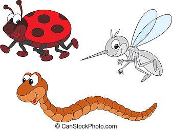 mosquito, mariquita, gusano