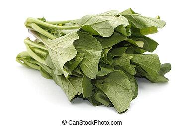 Mostaza verde vegetal sobre blanco