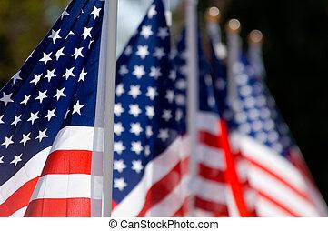 Mostrar bandera americana en honor al día de los veteranos