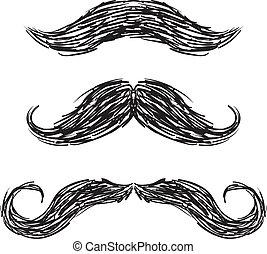 moustaches, conjunto, vector