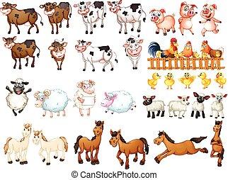 Muchos tipos de animales de granja