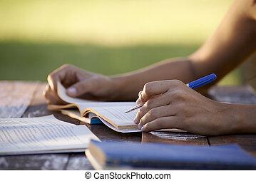 mujer, gente, estudiar, universidad, joven, educación, prueba