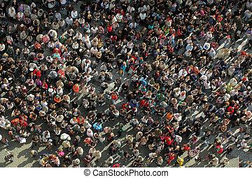 multitud, bird?s, vista