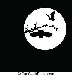 murciélago, vector, siluetas, luna