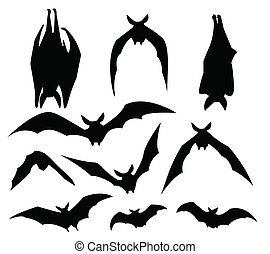 murciélagos, silueta