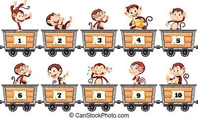 números, carros, contar, monos