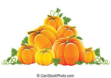 naranja, cosecha, colina, maduro, calabaza
