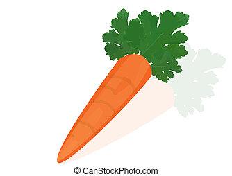 naranja, reflexión, zanahoria, fondo blanco