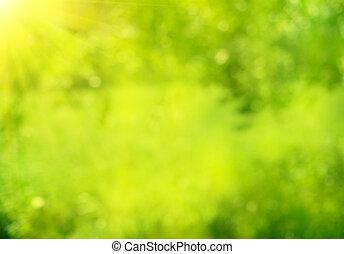 Naturaleza abstracta y verde fondo bokeh