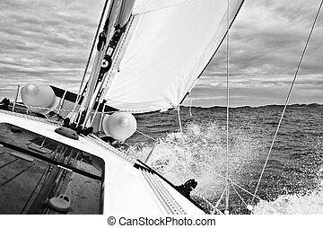 Navegación adriática