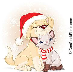 navidad, amigos