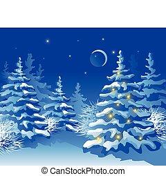 navidad, noche, bosque, invierno