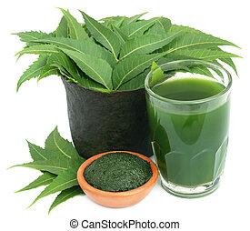 Neem medicinal sale con extracto y pasta terrestre