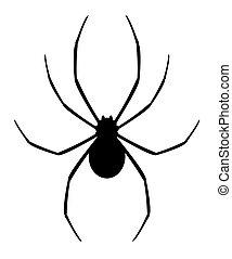 negro, araña