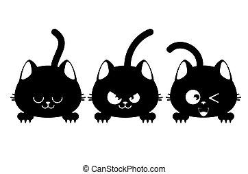 negro, tres, gato, caras