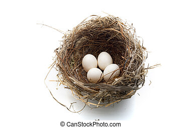 Nest y huevos