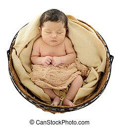 Nested recién nacido