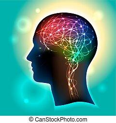neurons, cerebro