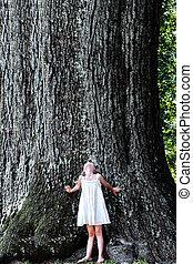 Niño parado bajo un árbol grande