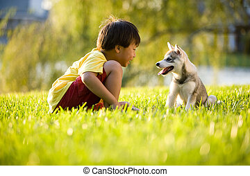 niño, perrito, joven, asiático, pasto o césped, juego
