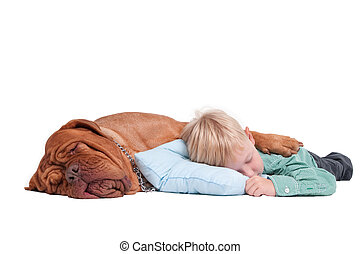 Niño y perro durmiendo en el suelo
