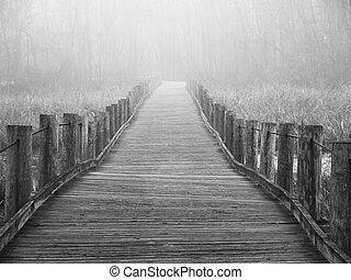 niebla, perdido