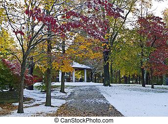 Nieve caída en el parque