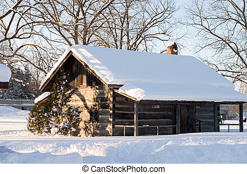 Nieve cubierta de techo