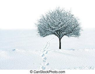 Nieve y árbol