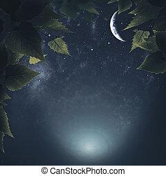 Noche en el bosque, antecedentes naturales abstractos