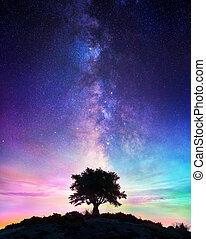 Noche estrellada - árbol solitario con forma lechosa