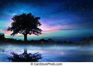 Noche estrellada con árbol solitario