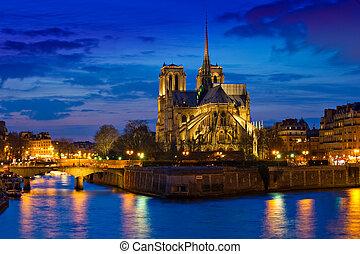 Notre Lady catedral por la noche en París Francia