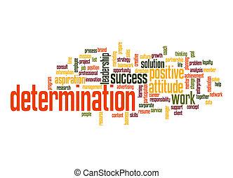 Nube de determinación