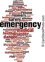 Nube de palabra de emergencia