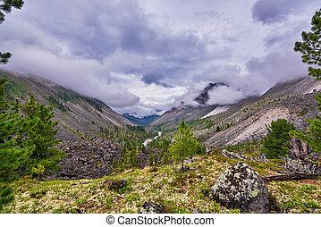 Nubes bajas sobre un valle de montaña