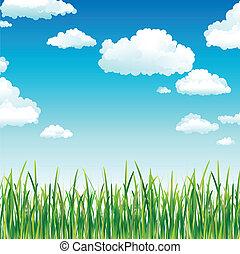 Nubes en el cielo sobre la hierba verde