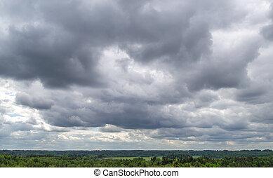 nubes, lluvioso, vista, forest., pino, oscuridad, cima
