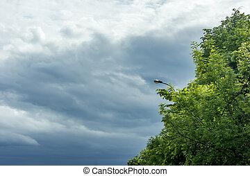 nubes, verde, lluvioso, oscuridad, árboles