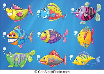 Nueve peces coloridos bajo el mar