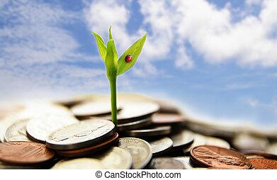 Nuevo crecimiento de las monedas - concepto financiero