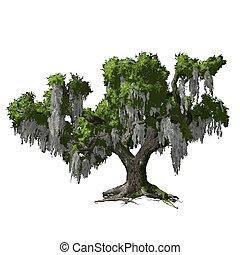 Oak Tree aislado. Ilustración del vector