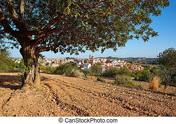 obispo, losa, del, aldea, valencia, españa