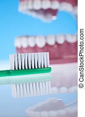 Objetos de salud dental