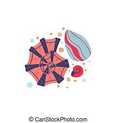 océano, burbujas, fondo., conchas, boho, vector, dibujo, moluscos, caricatura, arena, plano, caracoles, conchas marinas, ilustración, pattern., blanco, habitantes