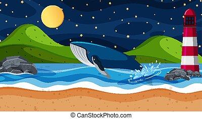 océano, escena, plano de fondo, ballena